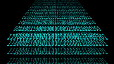 La disciplina giuridica del cyberspace