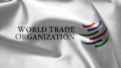 Il contributo del sistema di risoluzione delle controversie OMC all'emergere di principi di diritto amministrativo nell'ordinamento giuridico internazionale