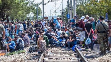 La gestione dei migranti climatici all'interno dell' UE