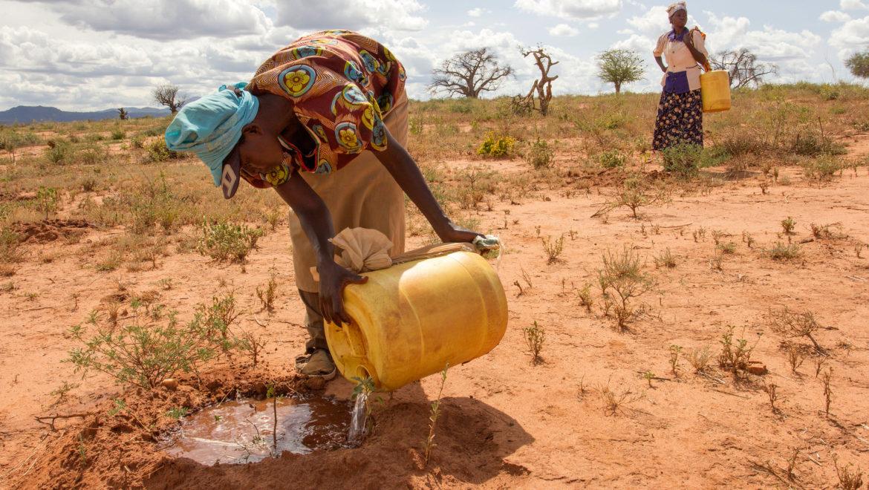 L'integrazione della dimensione di genere nella lotta ai cambiamenti climatici