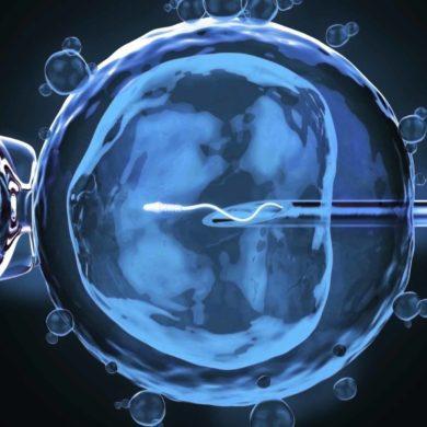 La legge 40 compie 15 anni: storia ed evoluzione della procreazione medicalmente assistita in Italia e nel mondo