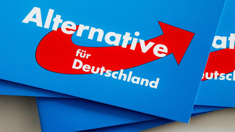 AfD: l'alternativa di destra nel panorama politico tedesco