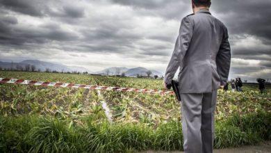 Agromafie: le nuove frontiere dell'imprenditoria criminale