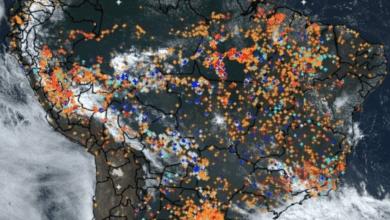 Amazzonia : tra crisi ambientale e fragilità economica
