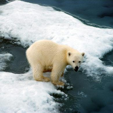 Inquinamento atmosferico da navigazione marittima nell'Artico: note sulla cooperazione internazionale nella regione a protezione dell'ambiente.