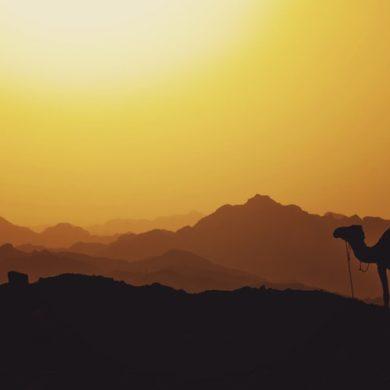La terza guerra mondiale non ci sarà, ma il futuro del Medioriente rimane preoccupante
