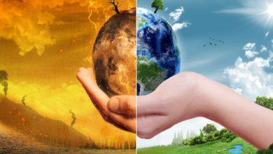 Global Green New Deal: uno sguardo al riformismo verde in Europa, Asia ed Africa.